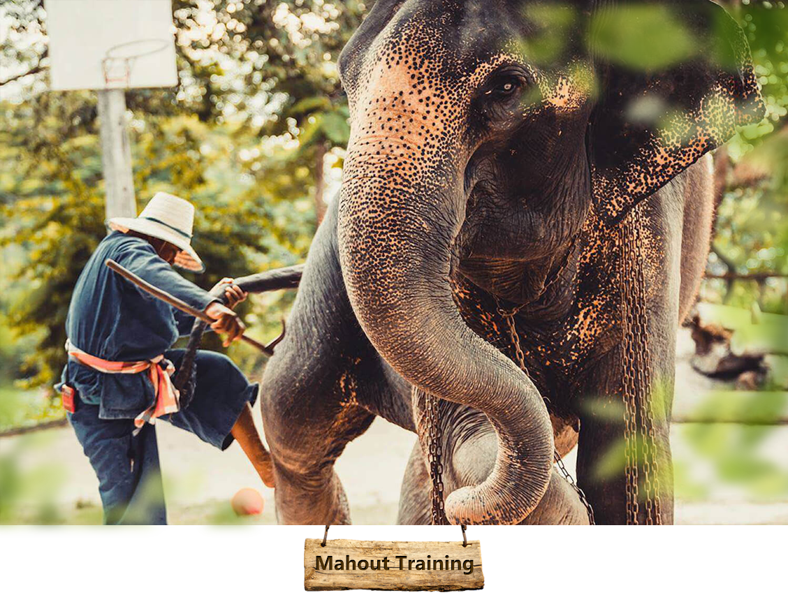 03mahout-training