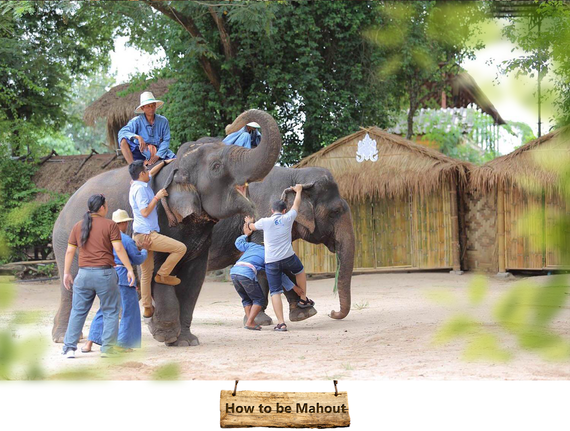 04how-to-be-mahout