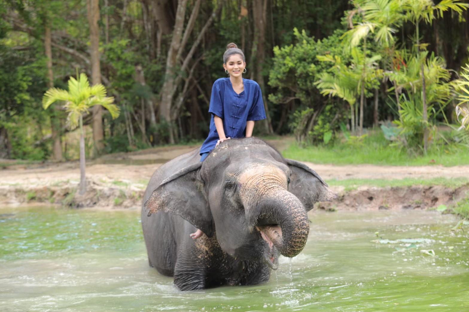 อาบน้ำกับช้าง_200103_0001