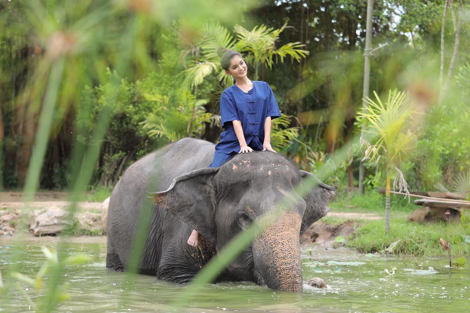 อาบน้ำกับช้าง_200103_0003