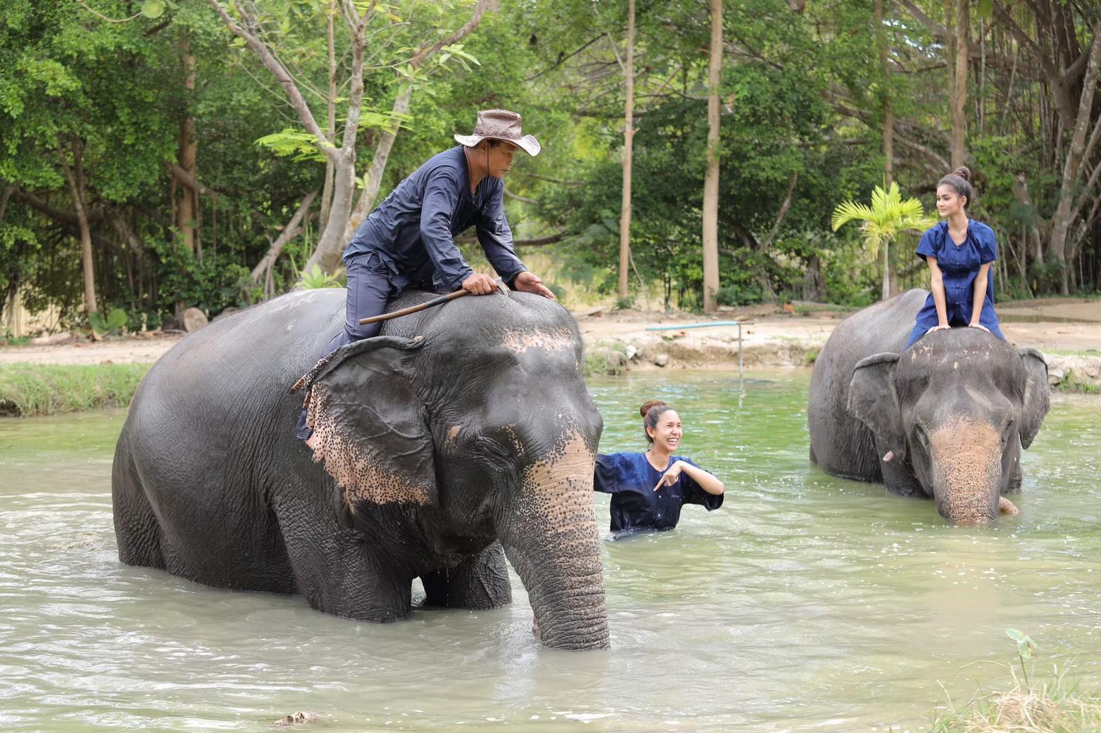 อาบน้ำกับช้าง_200103_0005