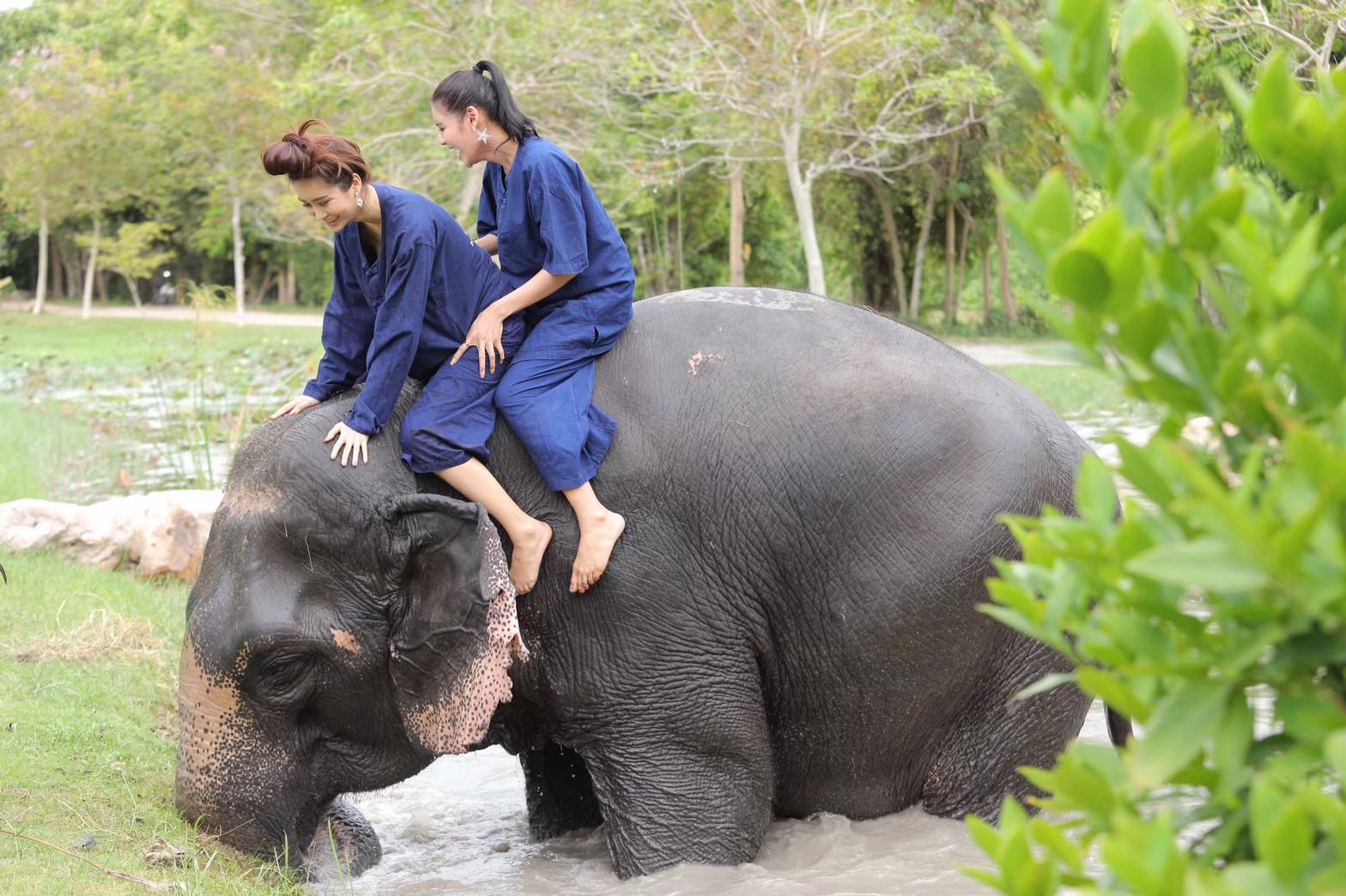 อาบน้ำกับช้าง_200103_0007