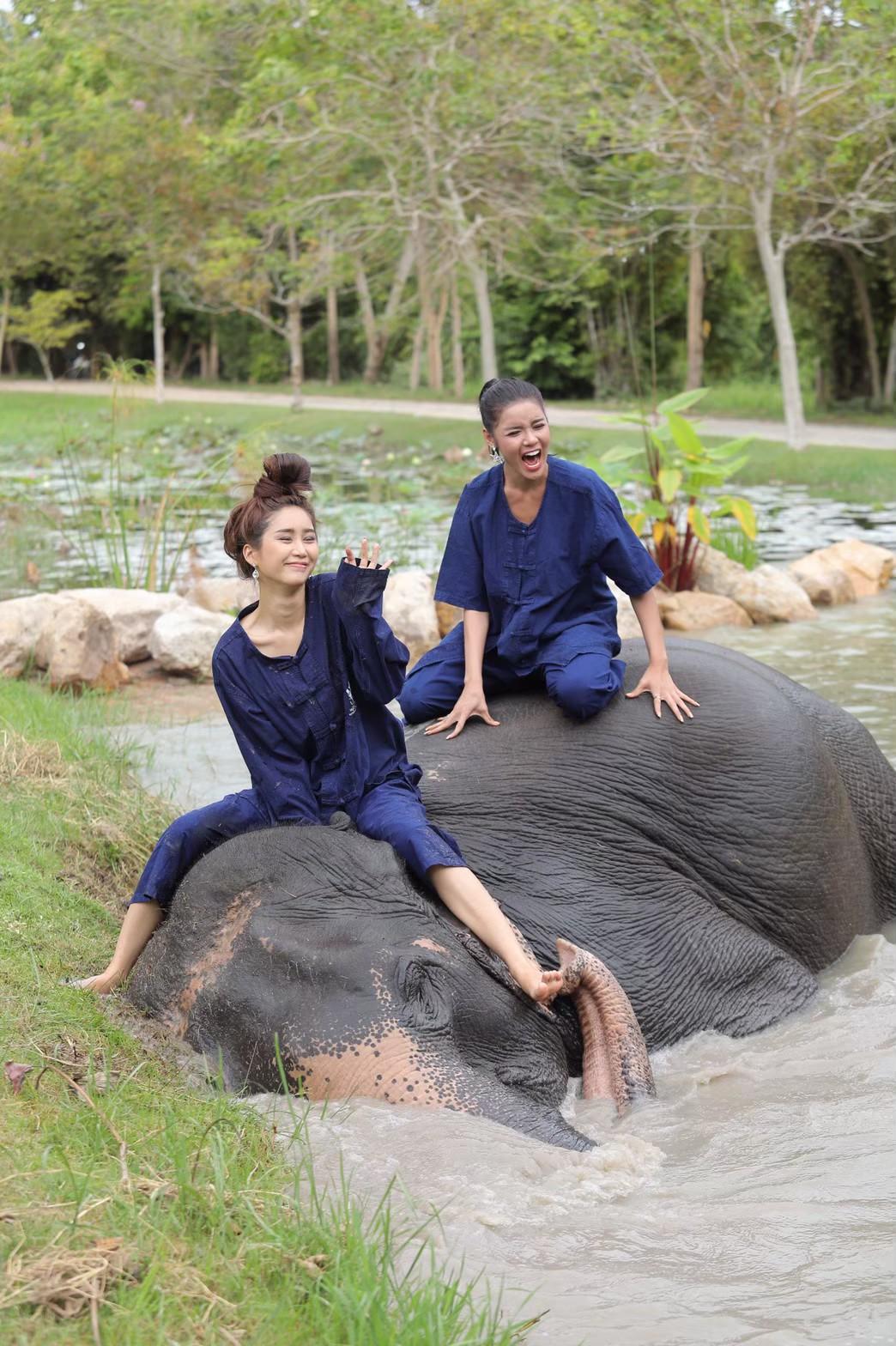 อาบน้ำกับช้าง_200103_0008
