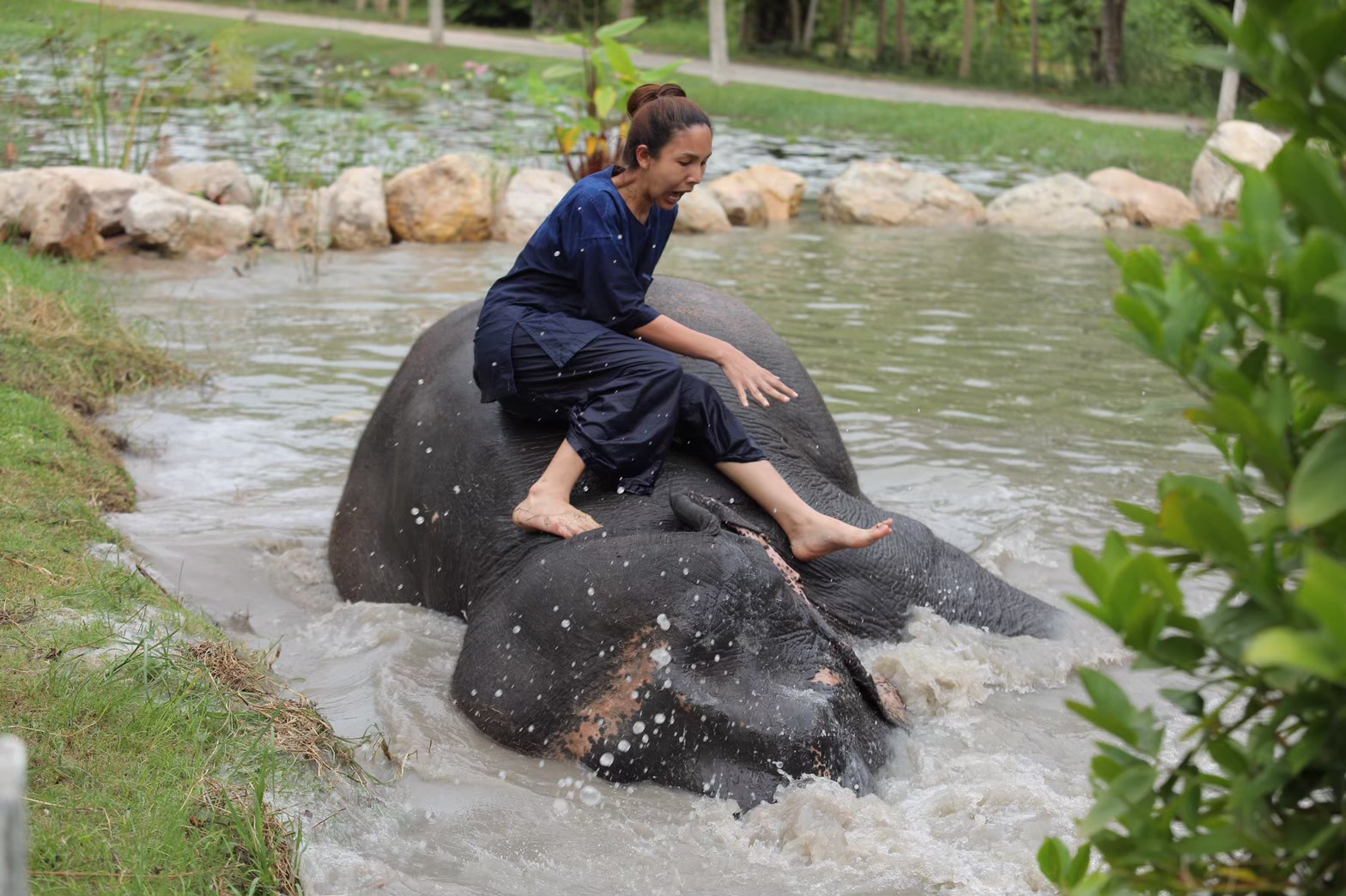 อาบน้ำกับช้าง_200103_0009