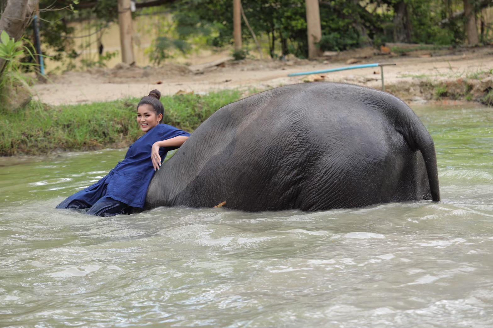 อาบน้ำกับช้าง_200103_0012