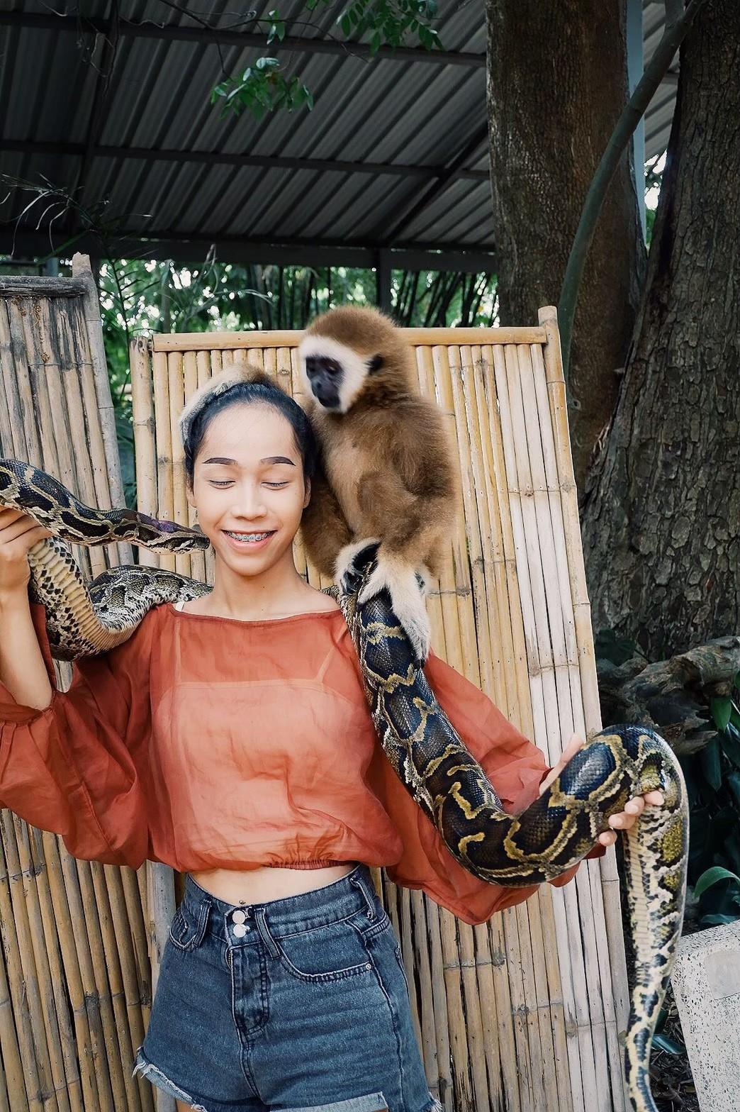 Mini zoo_200103_0005