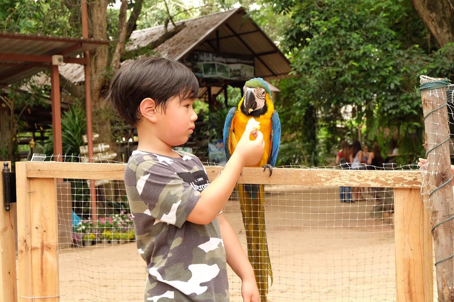 Mini zoo_200103_0027