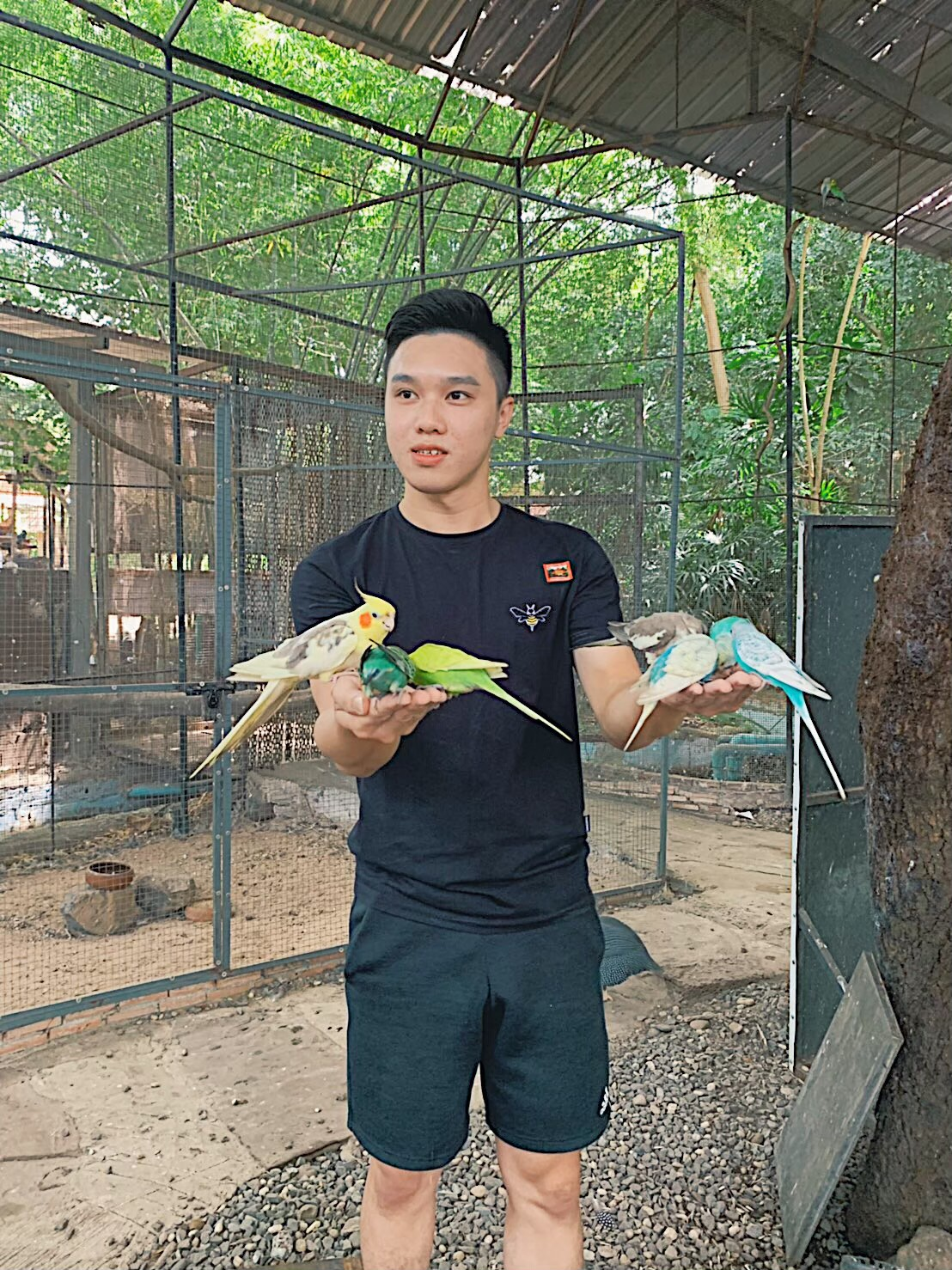 Mini zoo_200103_0042